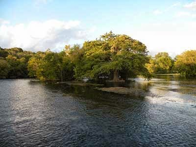 Parece mentira que de un río y una palabra tan bonita como Ébola haya fluido tanta inquietud...