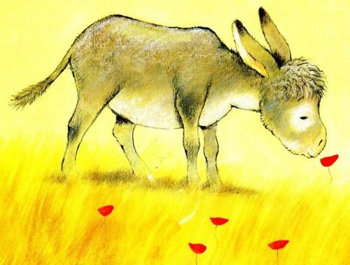 Las burradas del género humano son noticia siempre. Los cien años de un burro tan entrañable como Platero, sóloahora...