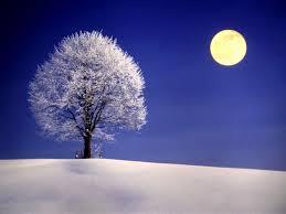 A tí también te hubiera gustado dejar huellas sobre la nieve...